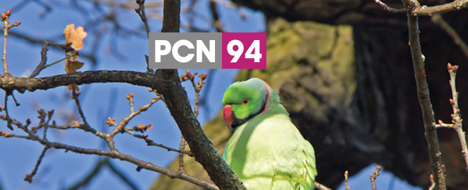 PCN Issue 94