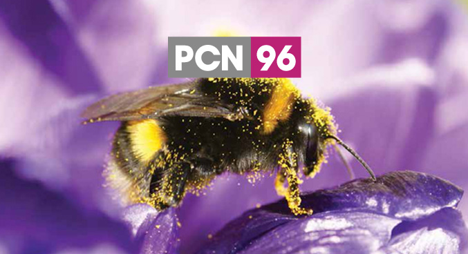 PCN Issue 96