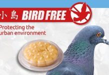 BIRD FREE AFFECTED BY THE WITHDRAWAL OF THE UK BPR DEROGATION