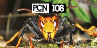 PCN Issue 108