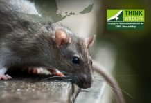 Helping gamekeepers with rodenticide stewardship best practice