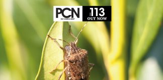 PCN 113 OUT NOW