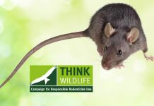 SUPER-RAT AND MOUSE STUDY APPEALS FOR TAIL TIP SAMPLES