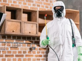 PEST MANAGEMENT PROFESSIONALS CONFIRMED AS KEY WORKERS